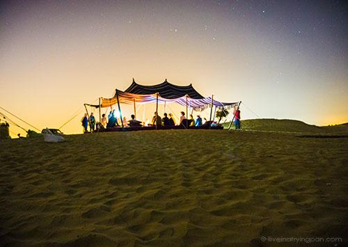 Ushi's camel farm - Dubai